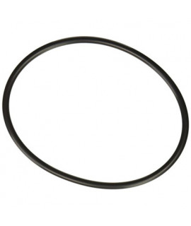 Уплотнительное кольцо для крышки хлоратора Hayward SPX3000SV