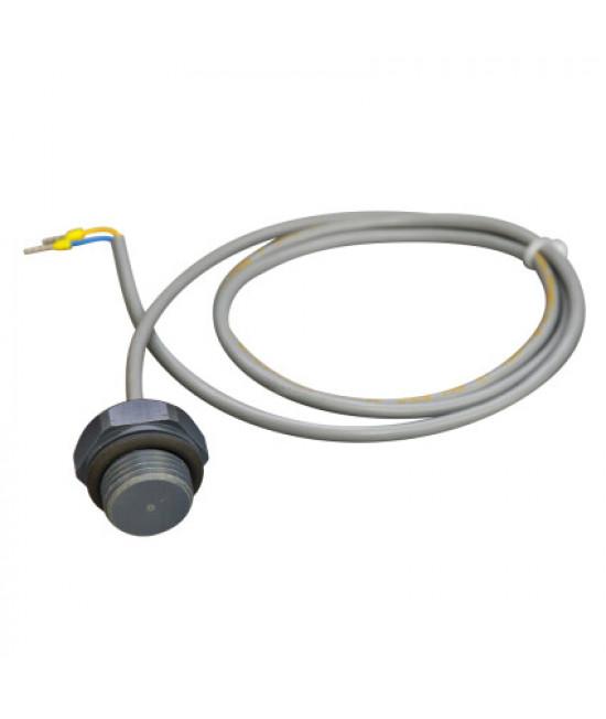 Датчик температуры Aquaviva PT 100 NUT