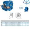 Компрессор одноступенчатый AquaViva 060 (318 м3/ч, 380В)