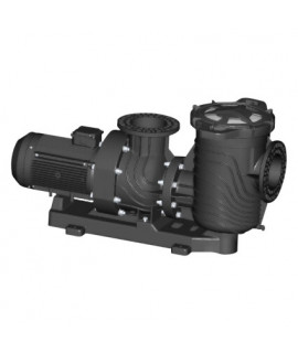 Насос Aquaviva LX SEQ1000 (380В, 122 м3/ч, 10HP), пластиковая подставка